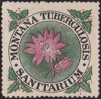US Local TB Montana #1280 1909