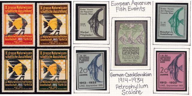 Tropical Angel Fish Early Event Poster Stamps