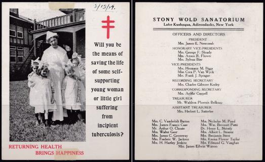 Stony Wold Leaflet