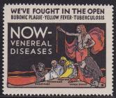 1918 American Social Hygiene Association, US Local TB Christmas Seal #84A